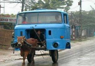 Две фотографии из путешествий Индия и Кимры. Рикша