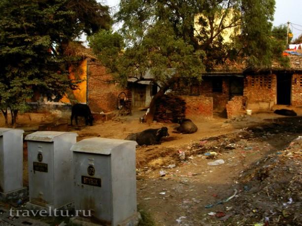 Как пьют воду в Индии. Мусор на улицах