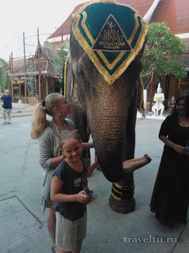 Сиам Нирамит. Слон-артист. Перед спектаклем