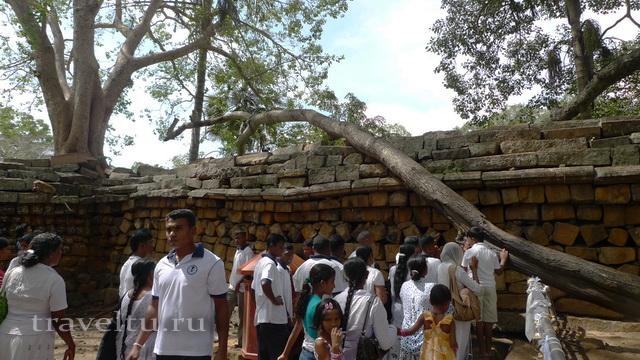 Шри-Ланка. Отзыв туристов. Храм дерева Бодхи