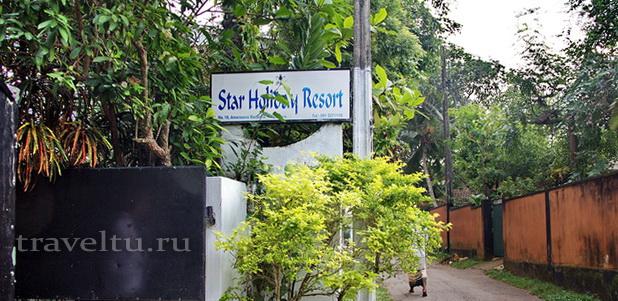 Отели Шри-Ланки. Хиккадува. Star Holiday resort. Отзыв