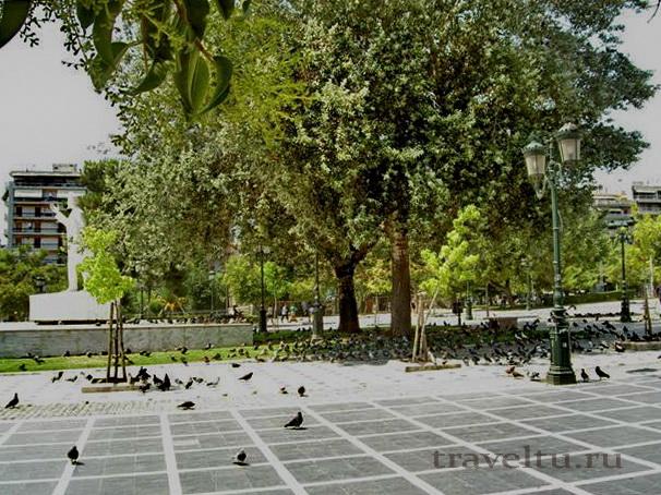 Салоники Греция городские голуби