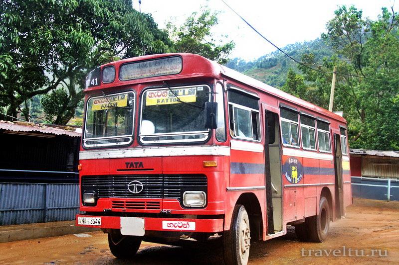 Транспорт Шри-Ланки. Автобус Шри-Ланки