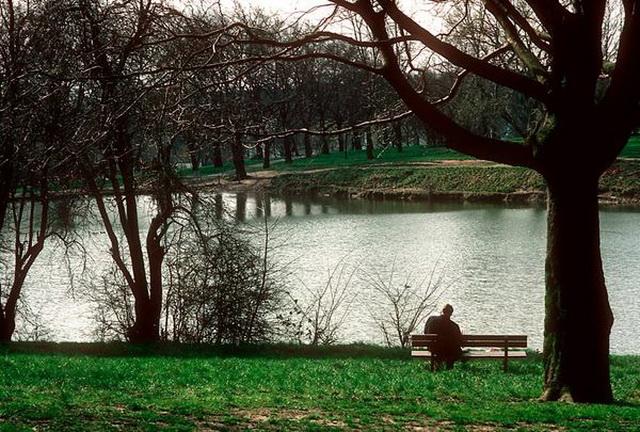 Десять сымах романтичных мест Европы. Хэмпстедский бор