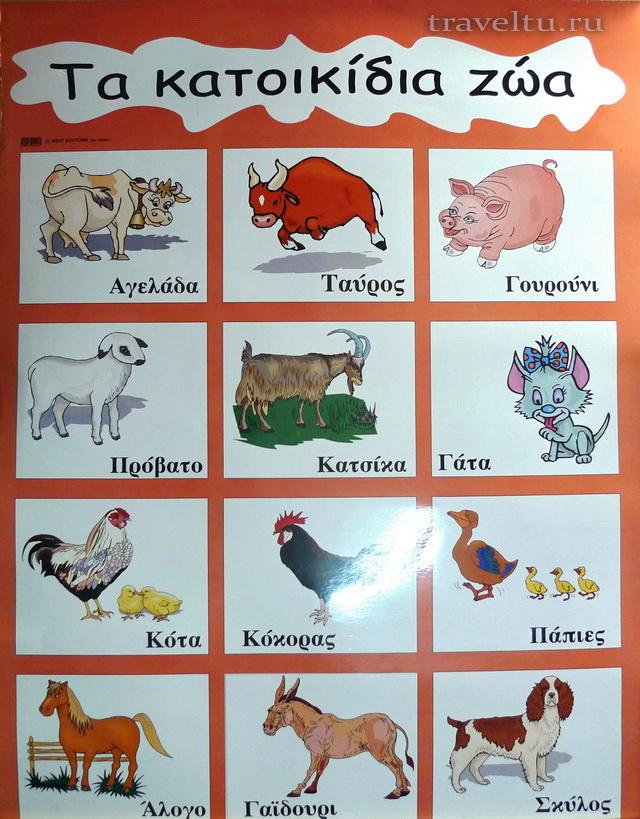Названия животных на греческом.