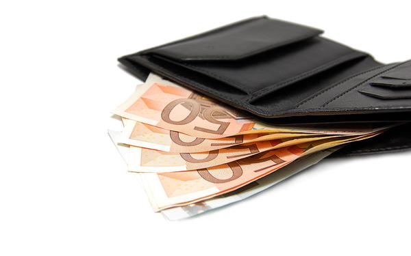 Картинка: Кошелек c евро 01