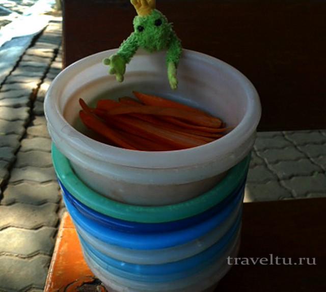 Вот так выглядят миски с морковью для кормления животных. Сафари-парк в Канчанабури.
