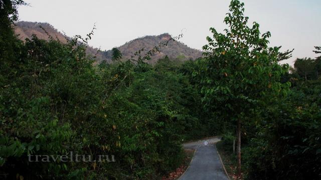 Водопад Эраван. Таиланд. Лес-2