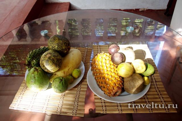 Сколько стоят фрукты на Шри-Ланке