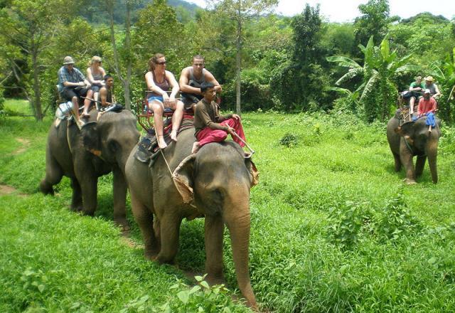 Прогулка на слонах (Elephant trekking) Ко Чанг