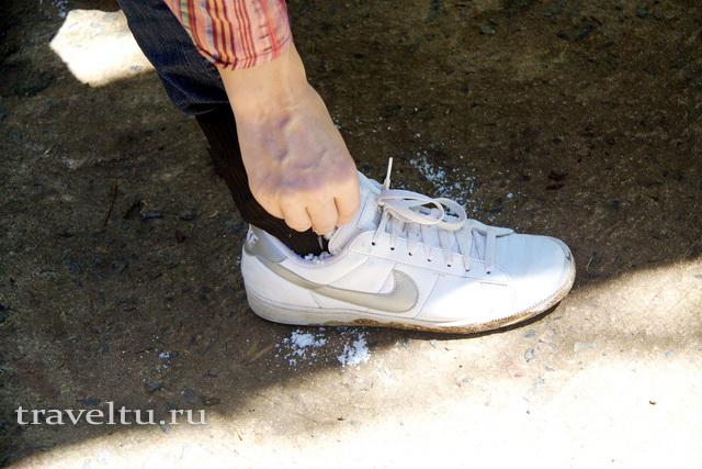 От пиявок обильно посыпьте обувь солью
