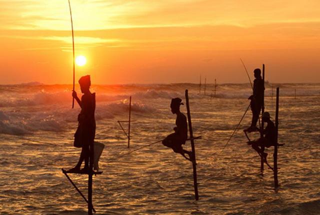 Знаменитые рыбаки на пляже Велигама
