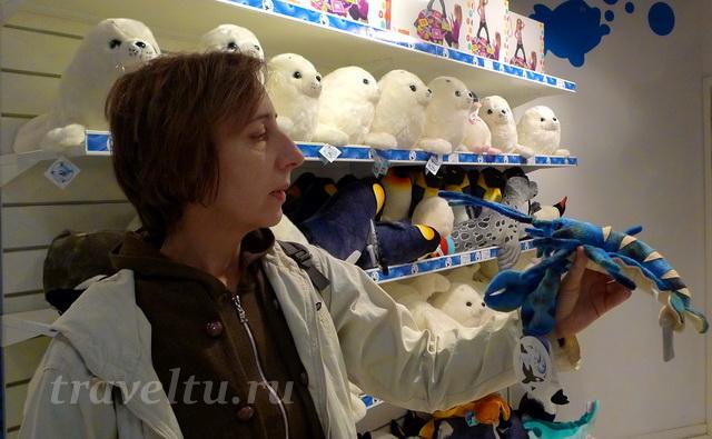 В магазине игрушшек
