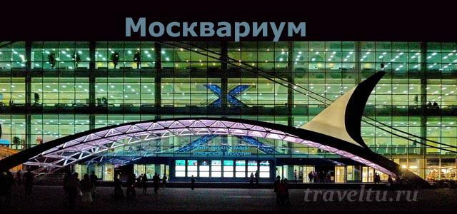 Москвариум вечером