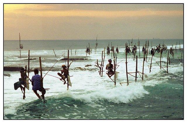 велигама рыбаки
