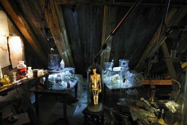 Чучела и скелеты в колбах