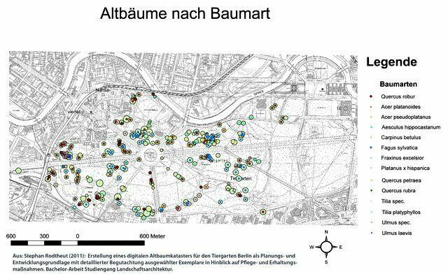 Карта распределения старых деревьев в Тиргартене