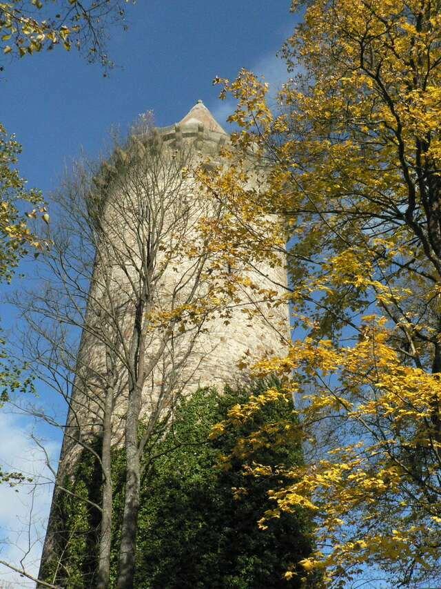Замок Рожмберк башня