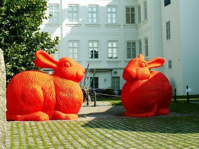 кролики музей кампа