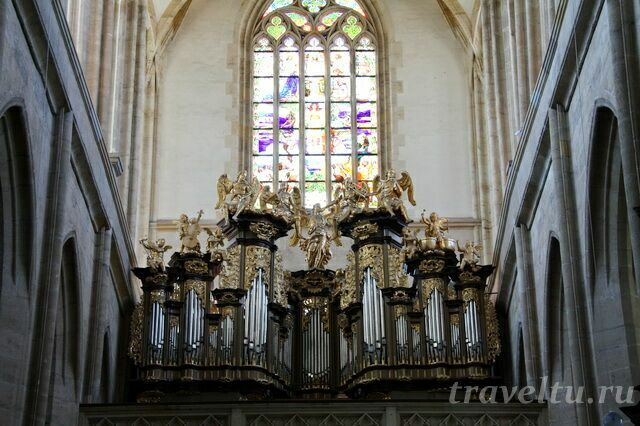 Собор святой Варвары орган