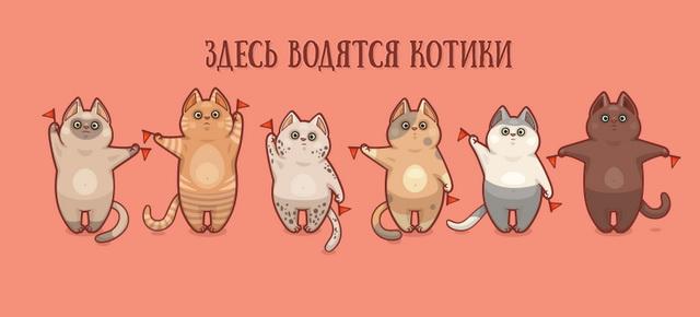 Здесь водятся котики