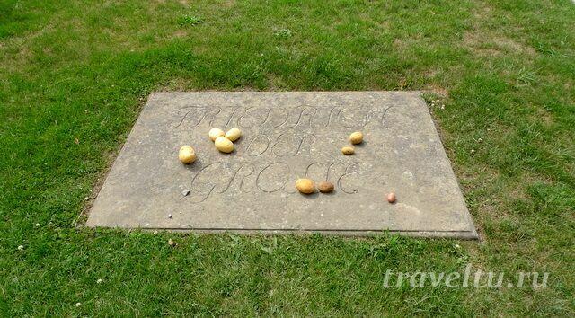 На могиле Фридриха II всегда лежит картошка