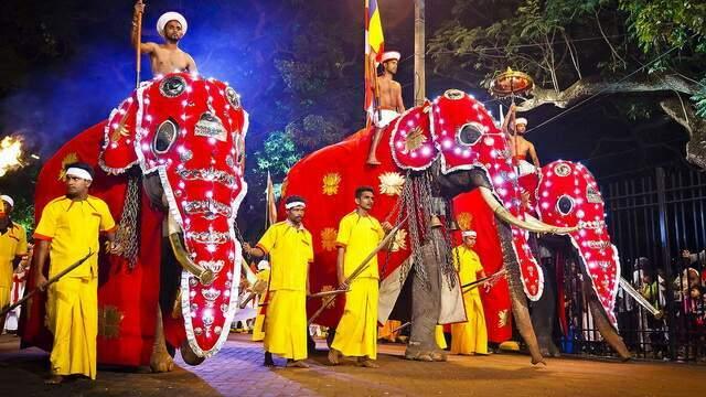 Наряженный для фестиваля слоны