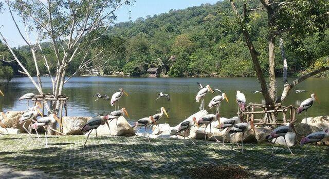 zoopark-khao-kheo-15