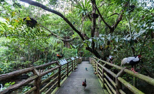zoopark-khao-kheo-19