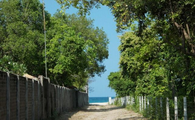Дорога к пляжу. Лето