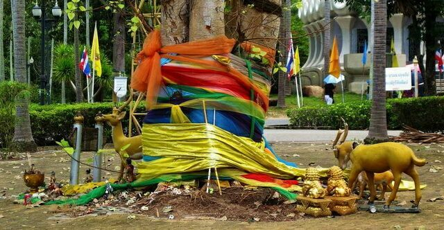 Священное дерево Бодхи