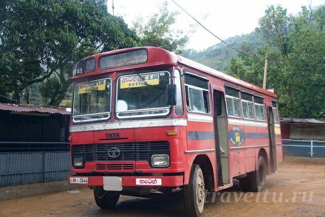 Автобус 41 приходит на центральную площадь поселения.
