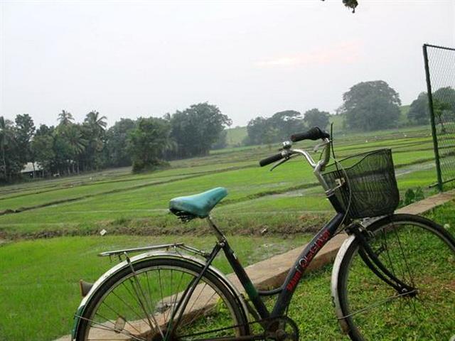 otel-manel-velosiped