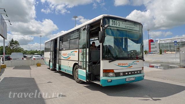 Автобус аэропорт Храброво Калининград