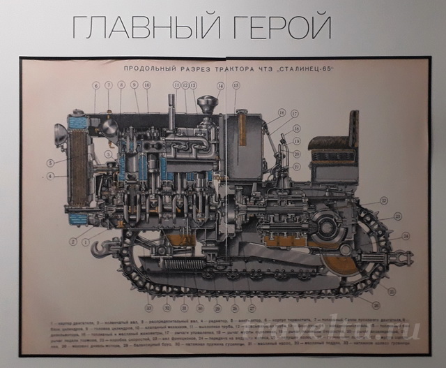 Сталинец 65